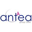 Antea Nemzetközi Temetkezési Kft.