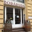 Boráruda
