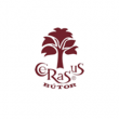 Cerasus és eKirakó - egyedi bútorok tervezése és kivitelezése