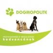Dogmopolite Kutyapanzió és Napközi - Buda