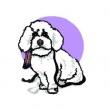 Marcipán Kutyakozmetika és Állateledel