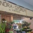 Nóra-Györgyi Virágüzlet - Fehérvári úti Vásárcsarnok (Fotó: Cseke Csizmadia)