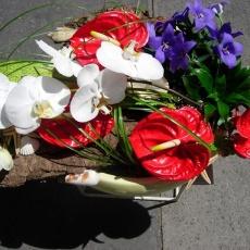 Akácfavirág Virágbolt - Tétényi út