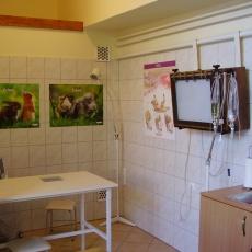Brútusz Állatorvosi Rendelő