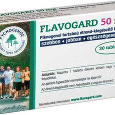 FLAVOGARD 4200FT