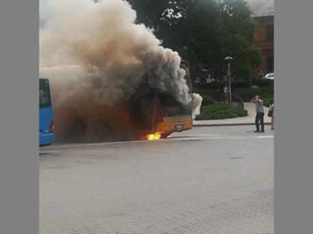 Kép: FB, buszosok, sofőrök