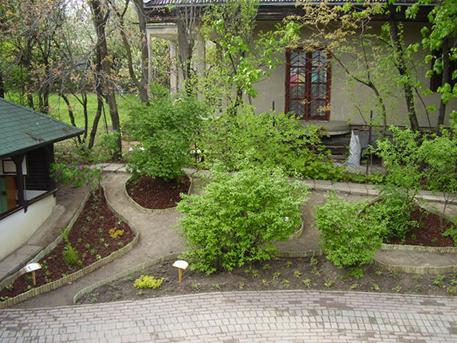 Résszlet az ovi kertjéből, fotó: crossfade kertészet
